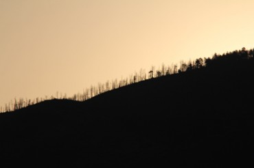 Contrasts of Sights and Sounds in Taos: Silhouette