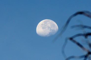 Contrasts of Sights and Sounds in Taos: Moon